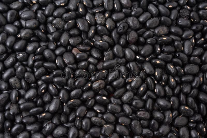Black raw beans royalty free stock image
