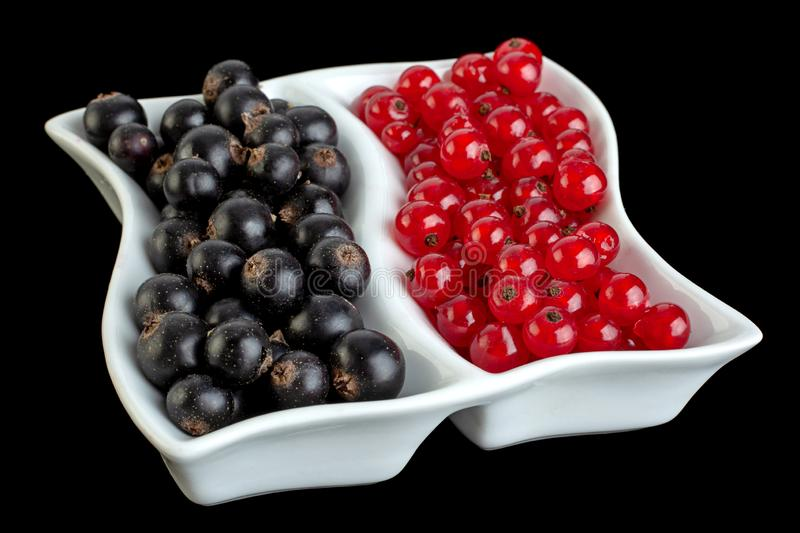 Black and red currant berries closeup royalty free stock images