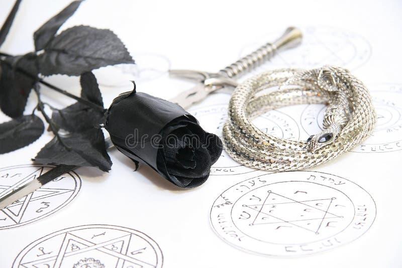 Black rose royalty free stock photos