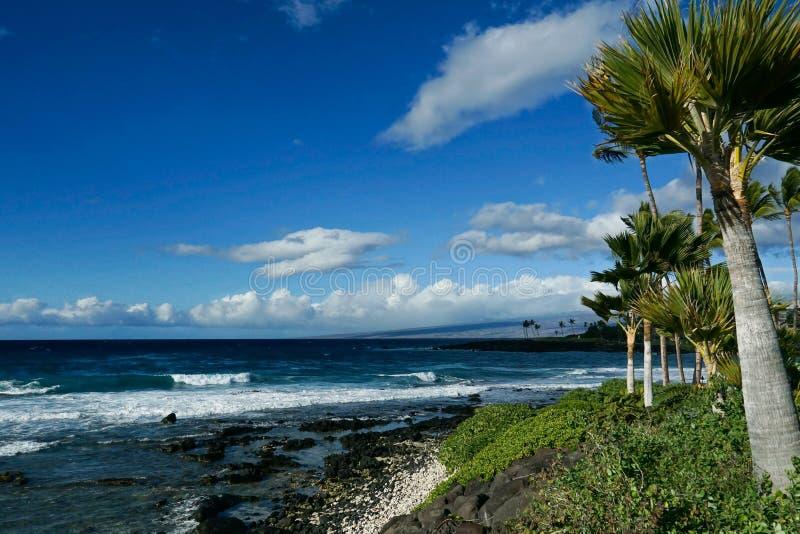 Black Sand Beach royalty free stock image