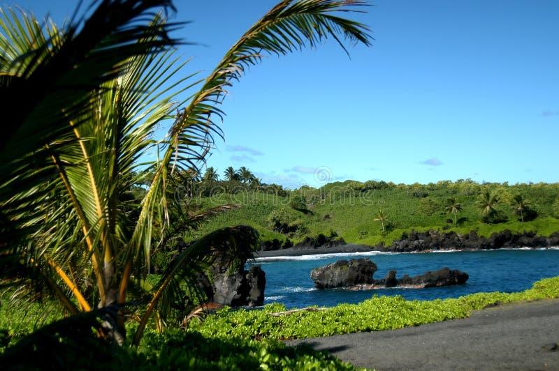 Download Black Sand Beach on Kauai stock photo. Image of america - 3227010