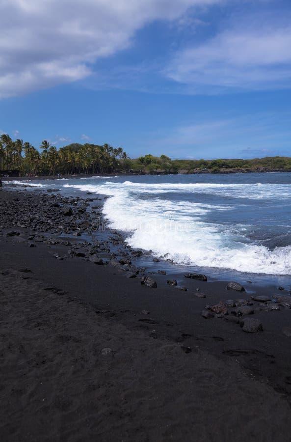 Download Black Sand Beach At Punalu'u State Park Stock Image - Image: 29036267