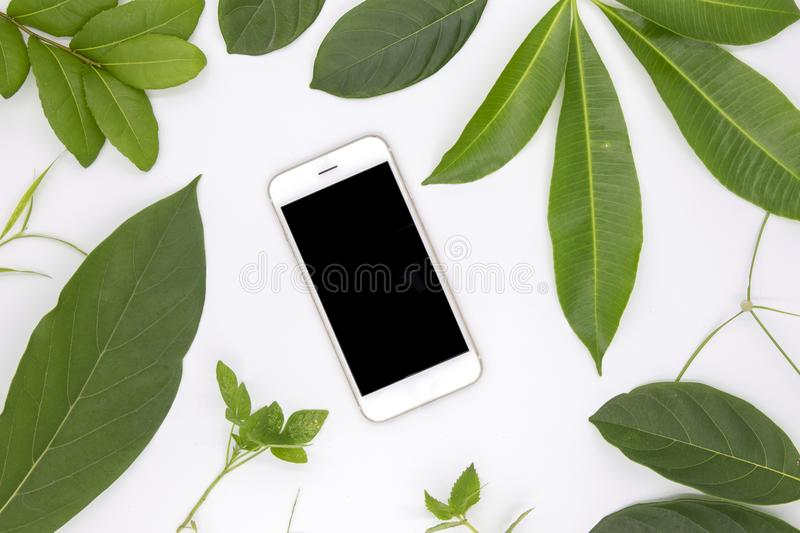 Black screen smartphone and green summer leaves on white background. User interface of mobile phone app mockup. With green foliage. Cellphone flat lay photo royalty free stock photography