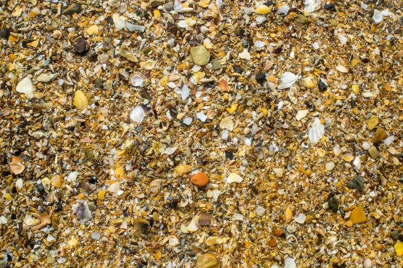 Black sea coast strewn with yellow sand and small shells royalty free stock images