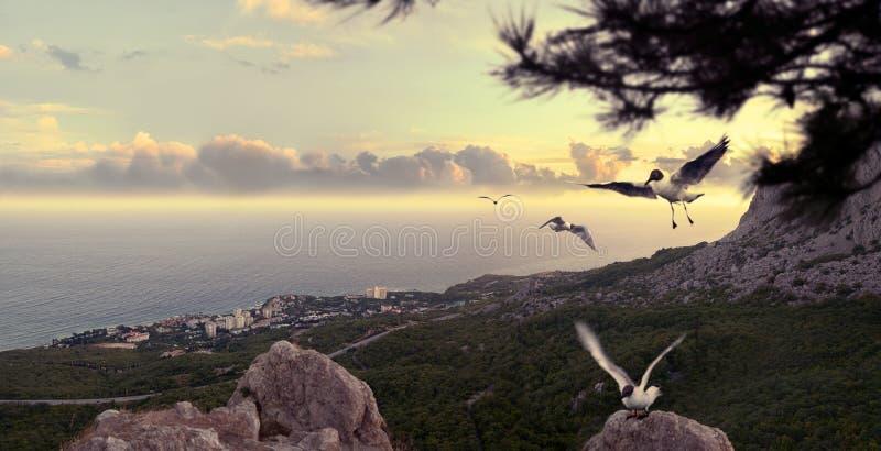 The Black Sea in Crimea. View from above of the Black Sea coast. Crimea. Panorama royalty free stock photo
