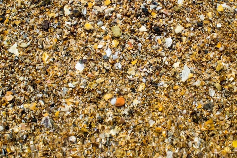 Black Sea kust som beströs med gul sand och små skal royaltyfri fotografi