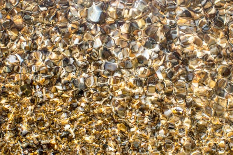 Black Sea kust som beströs med gul sand och små skal royaltyfri bild
