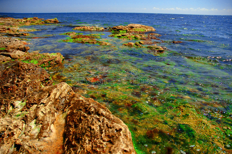 Download Black Sea Shore In Colors #2 Stock Image - Image: 915935
