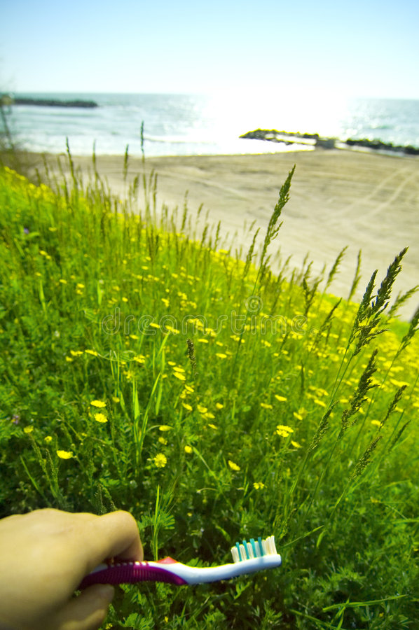 Black Sea From Wild Meadow at Olimp Resort stock photography
