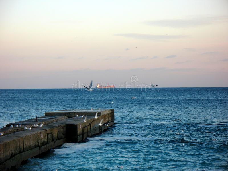 Black sea in winter and ship on the horizon. Sea pier with seagulls and ship on the horizon line in the winter sea stock photos