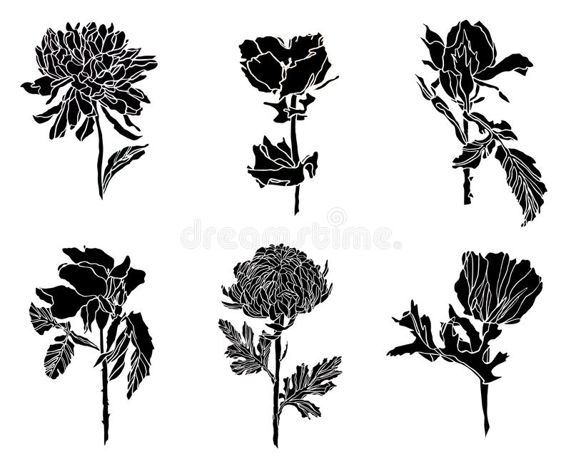 Black Set of different flowers - rose, chrysanthemum and poppy with leaves stock photography