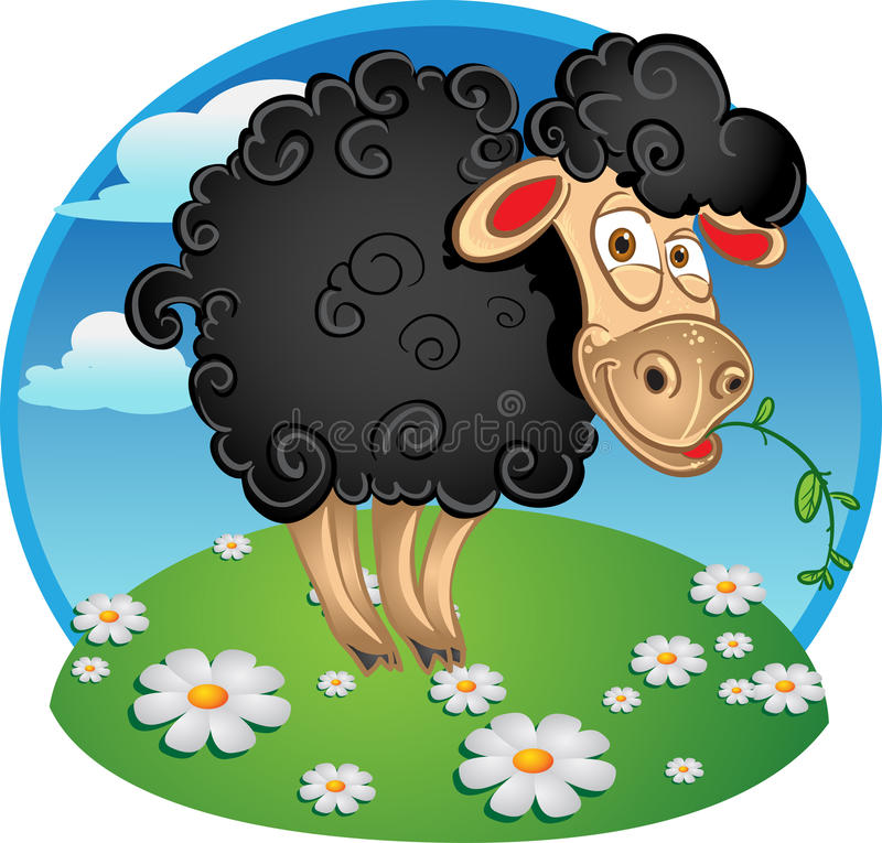 Black sheep with blade of grass on color royalty free stock image