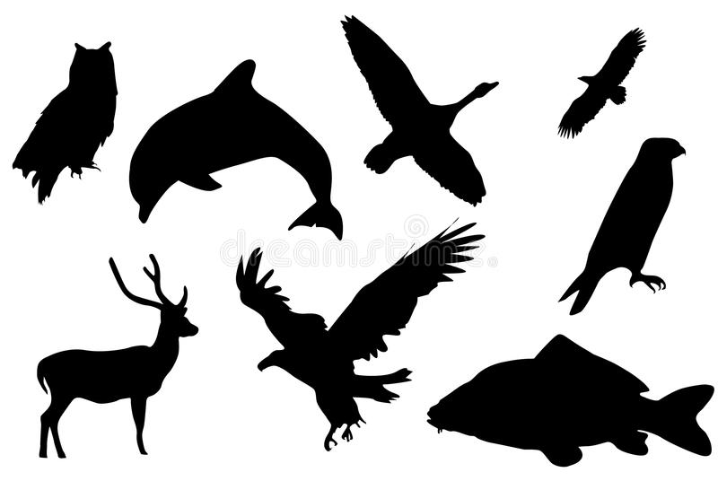 Black Silhouette Of Animals Stock Photo