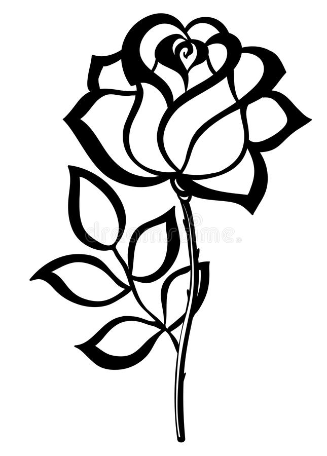 Free Black Silhouette Outline Rose, Isolated On White. Stock Photography - 33356252