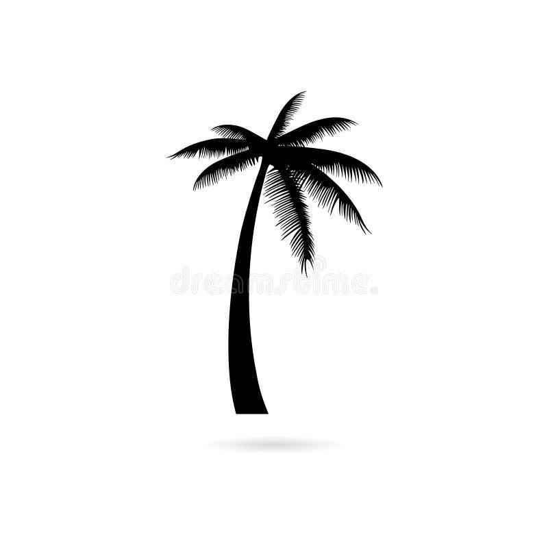 Black Silhouette palm tree, Palm tree icon or logo royalty free illustration