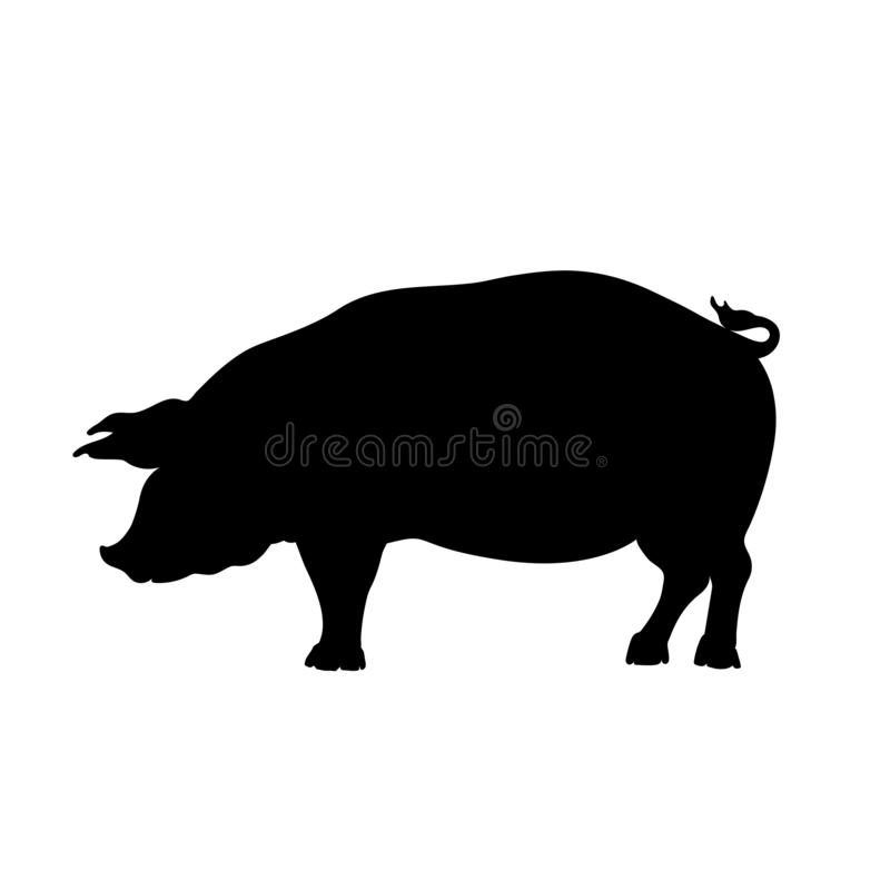 Black silhouette of pig. Isolated image of farm boar. Domestic amimal icon. Isolated image. Butcher shop logo. Vector illustration royalty free illustration