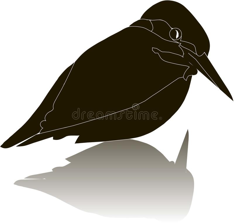 download black silhouette of a river kingfisher bird with shadow on white stock vector image