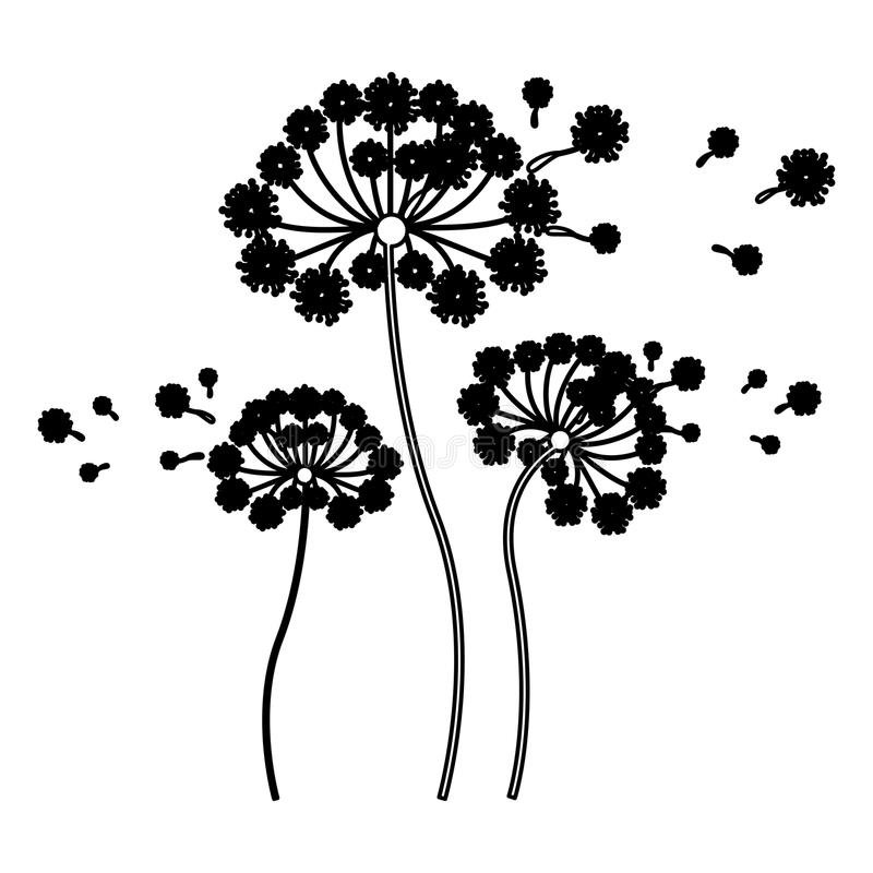 Free Black Silhouette Set Collection Dandelion And Fly Petals Stock Photo - 85190560