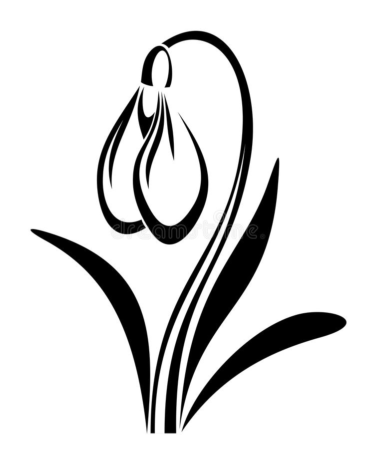 Black Flower Silhouette Pattern Royalty Free Stock Images: Vector Black Silhouette Of Snowdrop Flower. Stock Vector