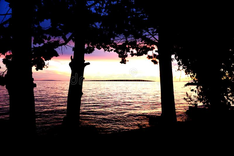 Black silhouette of trees with branches and leaves in front of seascape at purple and blue color sunset. Nature background with black silhouette of trees with stock photo