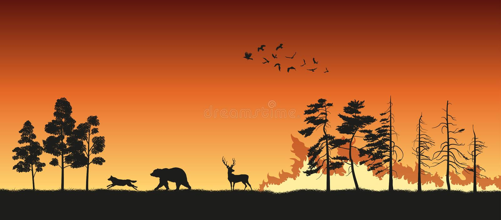 Black silhouettes of animals on wildfire background. Bear, wolf and deer escape from a forest fire vector illustration