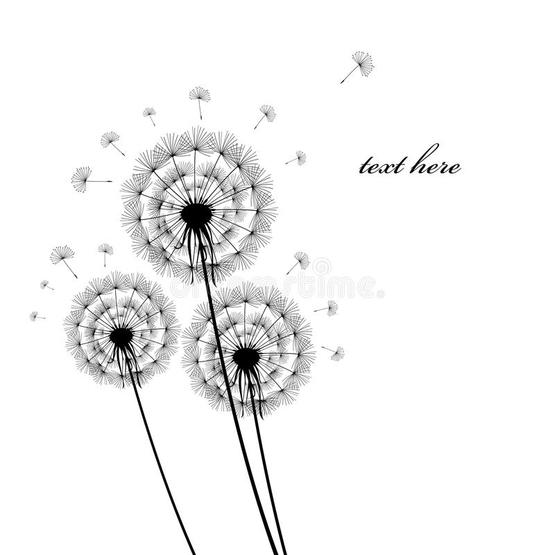 Download Black Silhouettes Of Dandelions Royalty Free Stock Images - Image: 18883419