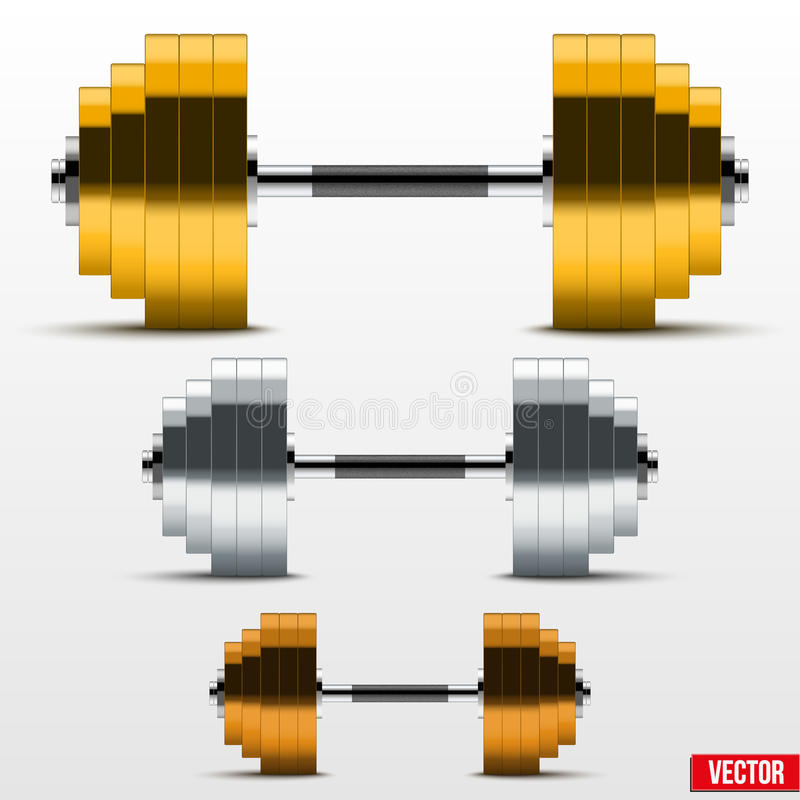 Black and silver classic power dumbbells vector illustration