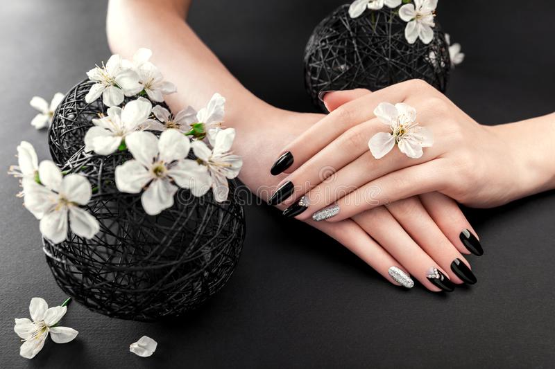 Black and silver manicure with cherry blossom on black background. Woman with black nails surrounded with white flowers royalty free stock photo
