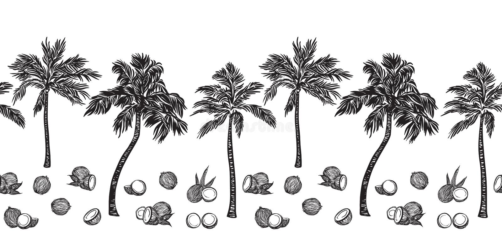 Black sketch palm tree and coconut outline horizontal seamless border. Vector drawing coco plants. Hand drawn endless illustration royalty free illustration