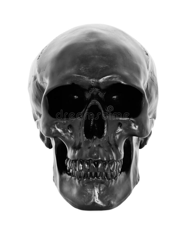 Black skull. Isolated on white background royalty free stock photo