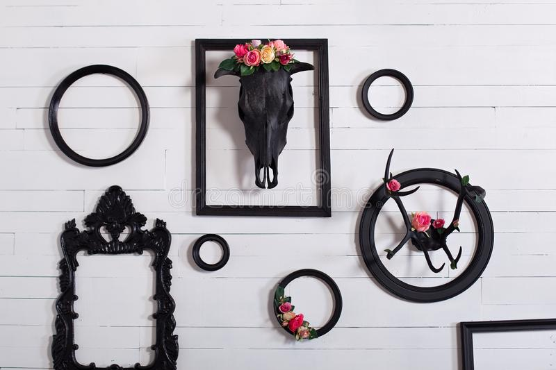 Black skull of a deer and horns on a wooden white wall with empty frames for paintings. The concept of decorating a wooden white w. All in the Gothic style in royalty free stock image