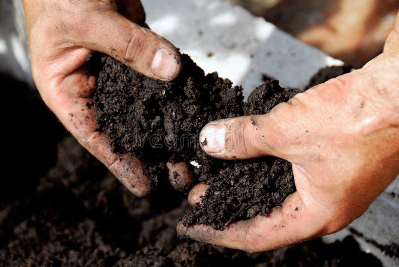 Black soil. In man hand closeup outdoor royalty free stock photos
