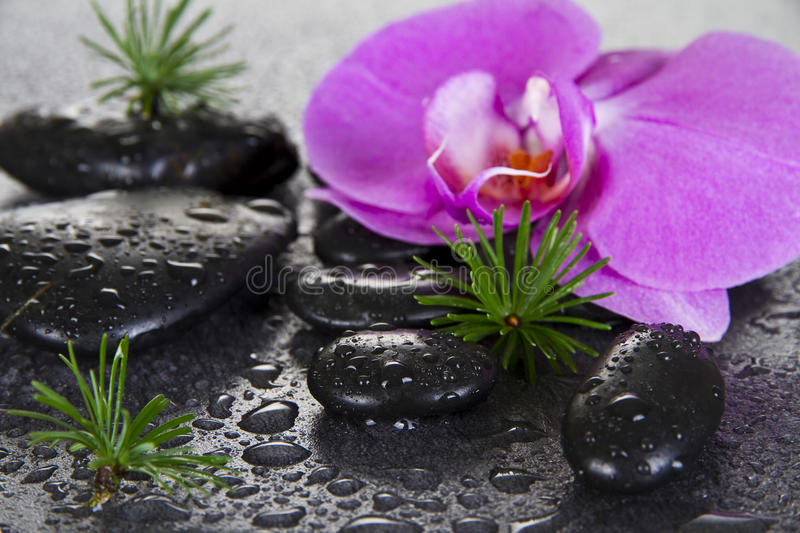 Black Spa Stones royalty free stock images
