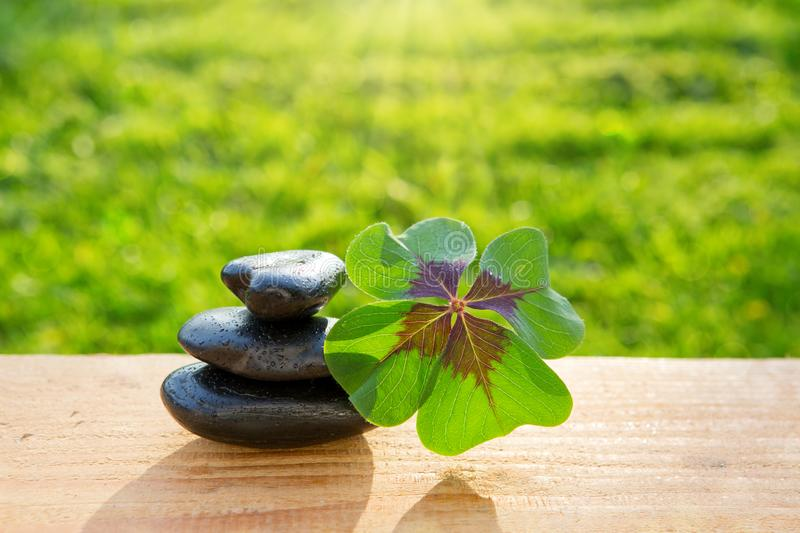 Black spa stones and four leaf clover . stock photo