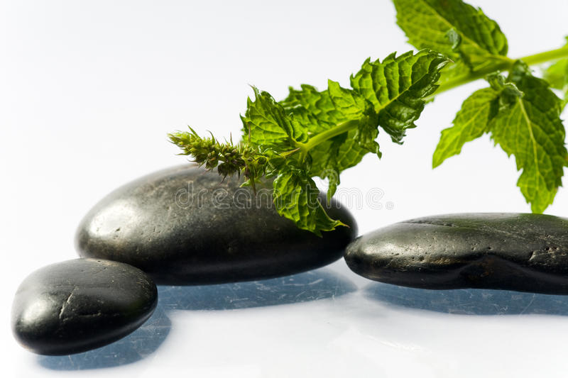 Black spa stones with leaf stock photo
