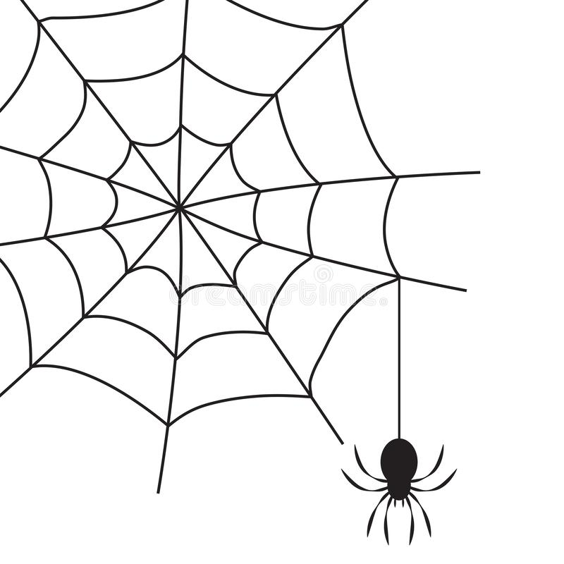 Black spider on spider`s web. Isolated on white background. Halloween symbol. Vector illustration royalty free illustration