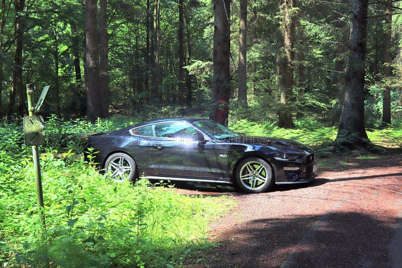 Black sports car in front of northern german landscape on a sunny summer day royalty free stock photo