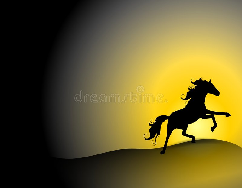 Black Stallion on Sunset Hill stock illustration