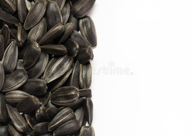 Download Black sunflower seeds stock image. Image of slide, rings - 22153907