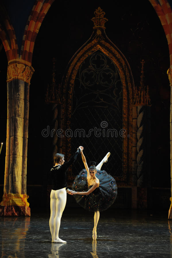 The black swan flapping its wings-ballet Swan Lake royalty free stock image
