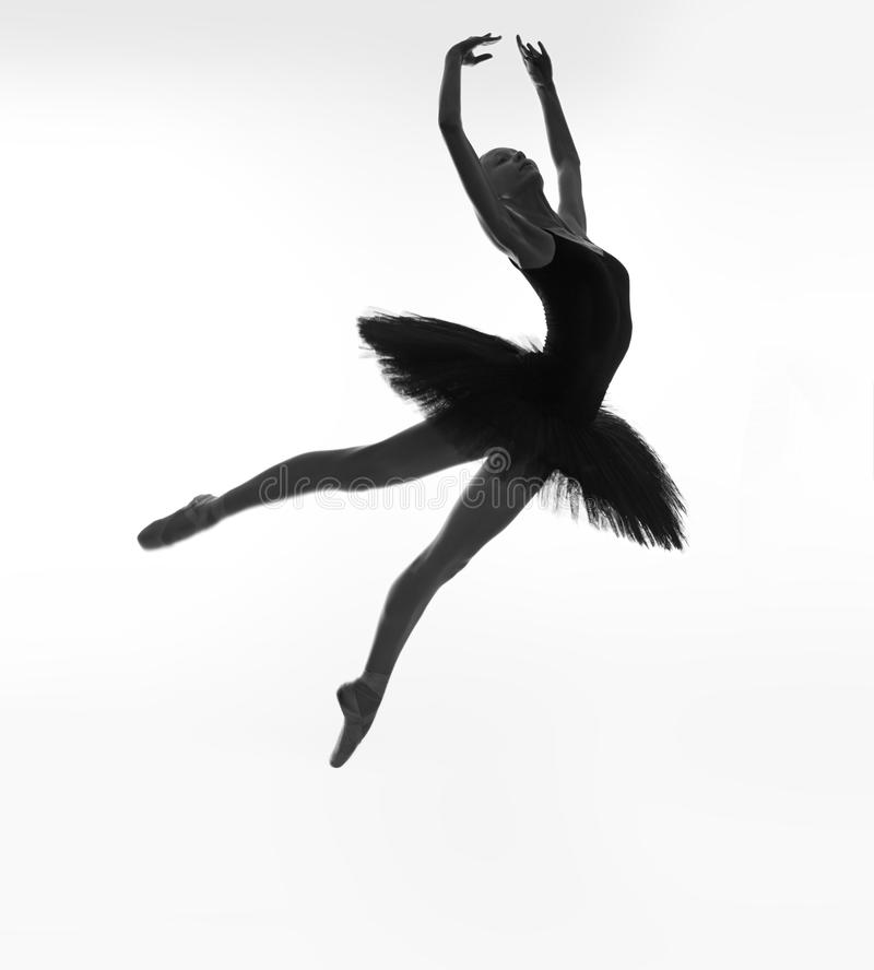 Black swan in a jump stock images