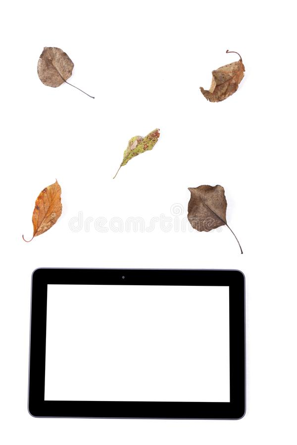 Black tablet on white background. Black tablet isolated in white background with leaves stock photos