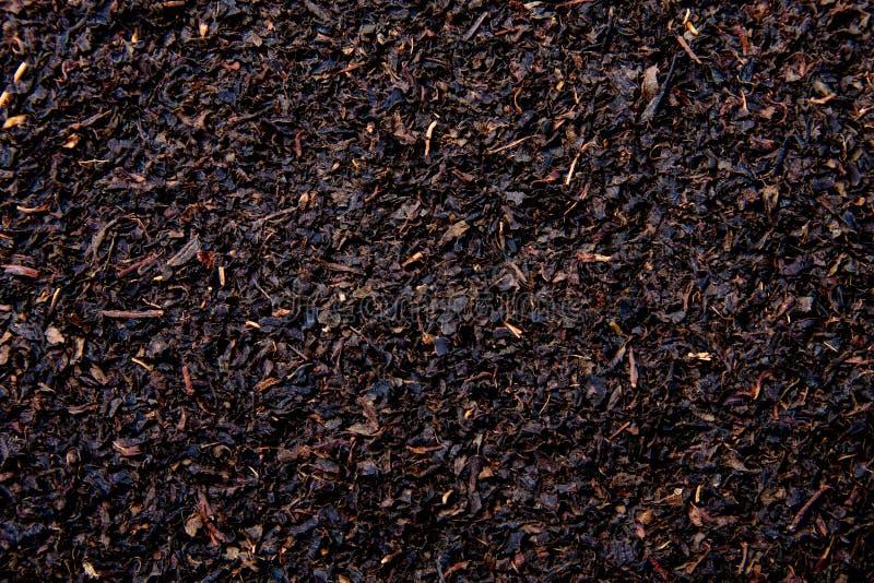 Black tea. Texture of dry black tea. close up photo royalty free stock photo