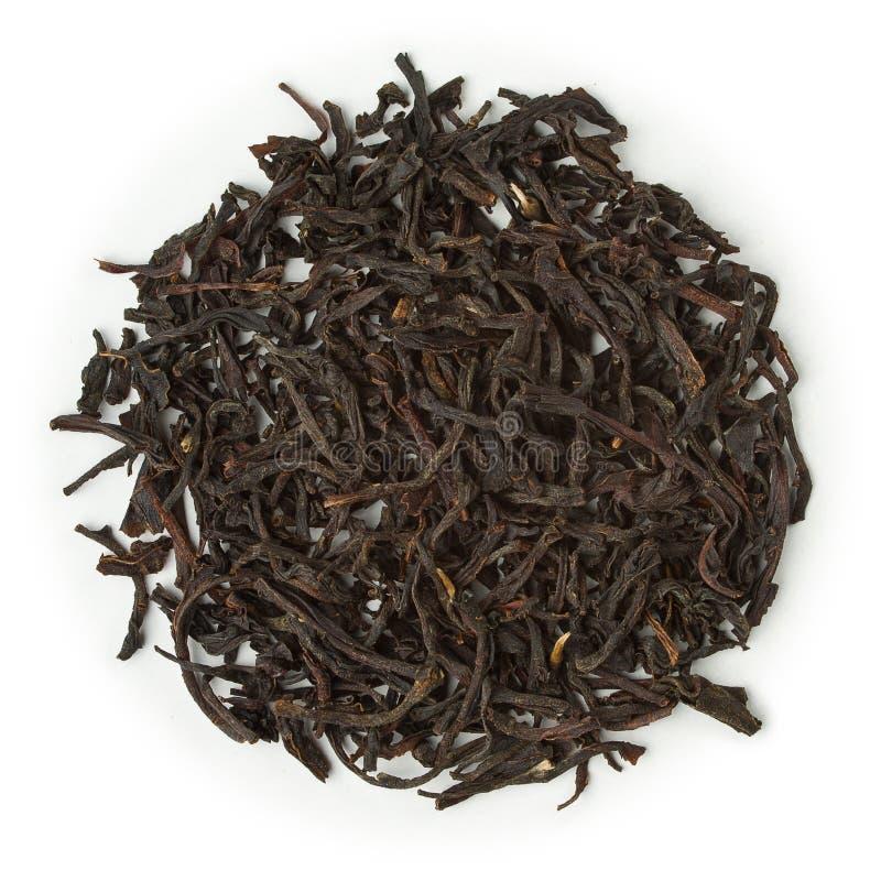 Black tea ceylon uva royalty free stock image
