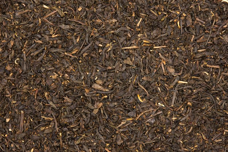 Black tea earl grey stock image
