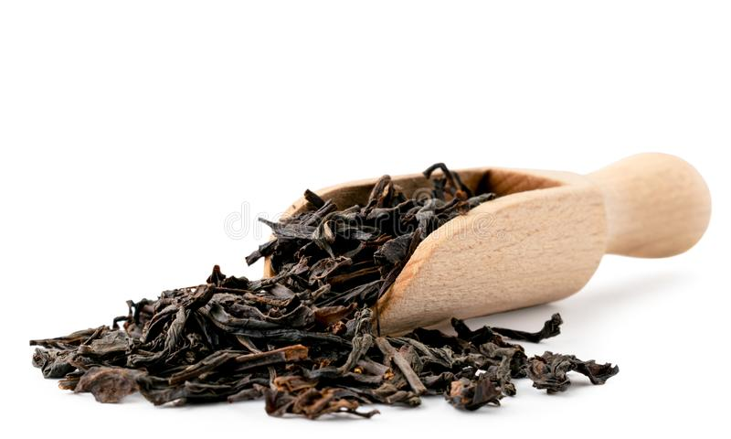 Black tea leaves spilled from a wooden spoon in close-up on a white. Isolated. stock image