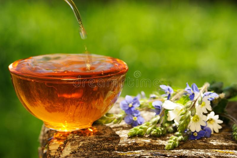 Black tea poured into glass cup on wooden board with blue and white flowers on green background copyspace stock photo