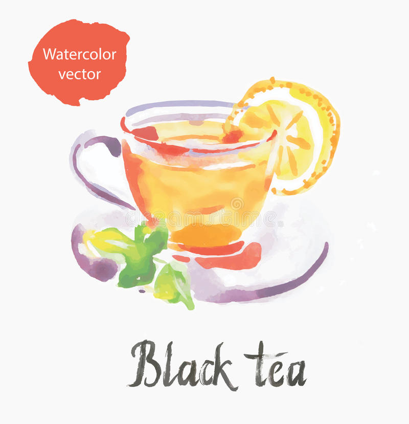 Black tea stock illustration