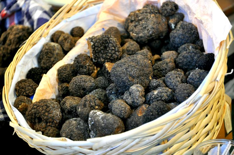 Black truffle market in Italy royalty free stock images