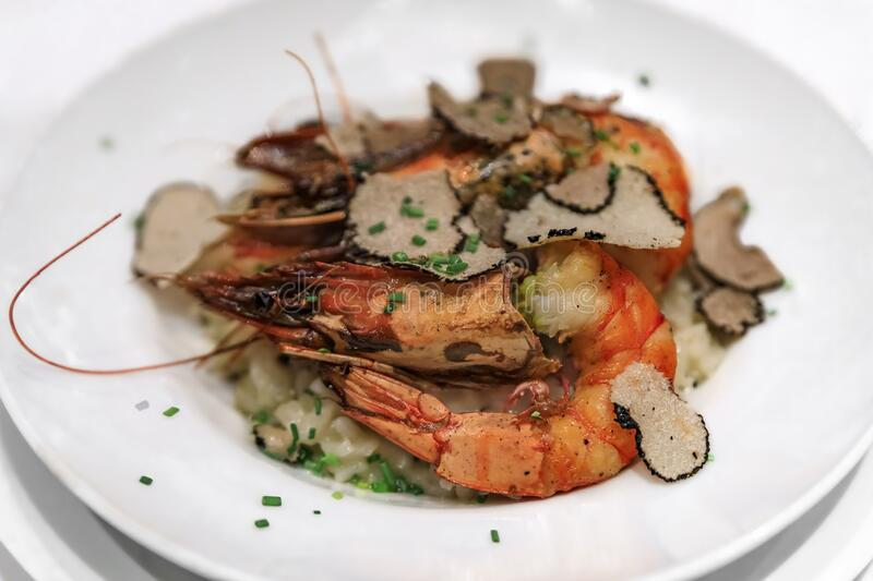 Black truffle slices shaved on top of a plate of grilled prawn risotto served at a luxury restaurant in Nice, France. Black truffle slices shaved on top of a royalty free stock photo